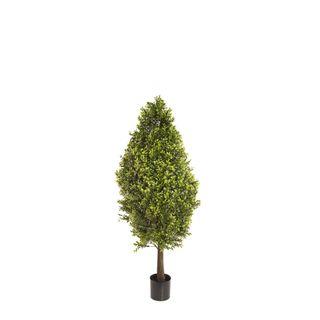 Boxwood Cone 90cm
