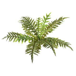 Fern Foot Real Touch 55cm