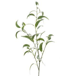 Eucalyptus Spray Thin Leaves 1.15m