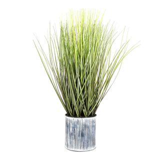 Grass in Pot 64cm