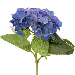 Hydrangea Water 49cm Dark Blue