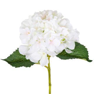 Hydrangea Stem 62cm White