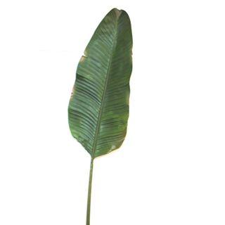 Banana Leaf 1.7m Green