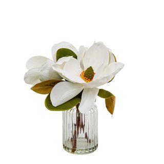 Magnolia in Glass Vase 30cm White