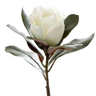 Magnolia Single Head 70cm White