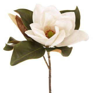 Magnolia Flower 72cm White