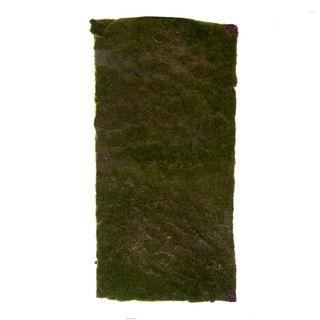 Moss Mat Large 100x50cm Green