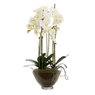 Orchid Glass Bowl Large 85cm White