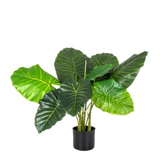 Philo Tree Real Touch 68cm