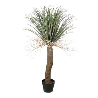 Grass Tree Small 1.1m