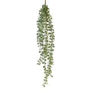 Succulent Hanging Vine 85cm