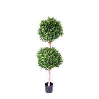 Boxwood Double Ball Tree 1.1m