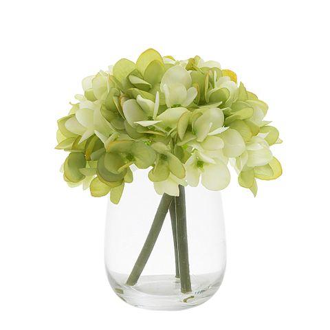Hydrangea in Glass Vase Green