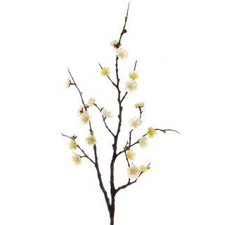 Plum Blossom Spray 85cm Cream