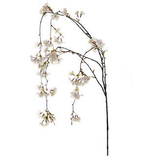 Cherry Blossom Hanging Spray 1.3m White
