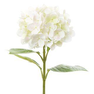 Hydrangea 67cm White