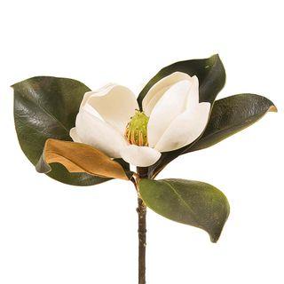 Magnolia Short Stem 60cm White