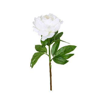Peony Queen 70cm White