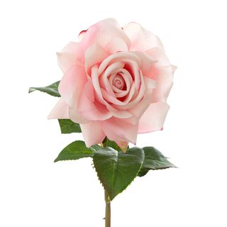 Rose True Touch 50cm Pink