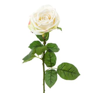 Cabbage Rose Real Touch 65cm White