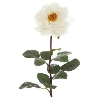 Rose Single Long Stem 70cm White