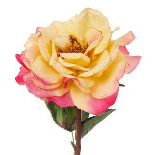 Rose Single Short Stem 33cm Gold and Pink
