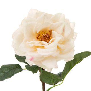 Rose Single Short Stem Pale 33cm Peach