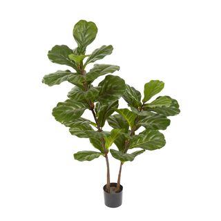 Fiddle Leaf Tree 1.13m