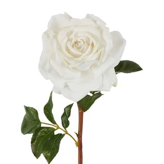 Stella Real Touch Rose Stem White
