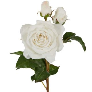 Olivia Bud Real Touch Rose Stem White