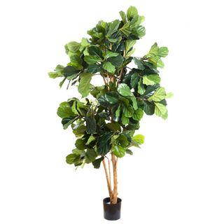 2.0M Fiddle Leaf Tree W 372 Lvs