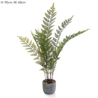 Fern in Pot 89cm Green