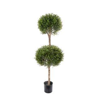 Lavender Tree x 2 1.2m 2124Lvs
