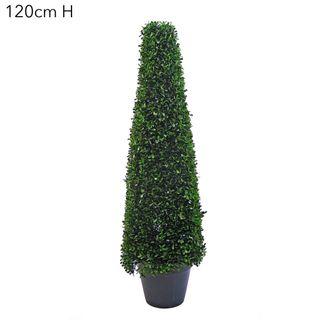 Boxwood Topiary W/Pot - Green