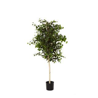 1.5m Birch Tree w/1540 Lvs White Trunk