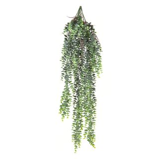 Fern Staghorn Hanging Grey and Green