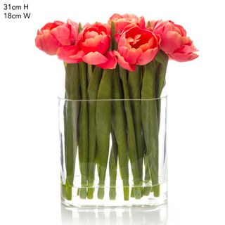 Tulip in Water in Vase Salmon