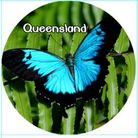 MAGNET QUEENSLAND (BUTTERFLY) 50MM