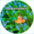 MAGNET QUEENSLAND (CLOWN FISH) 50MM