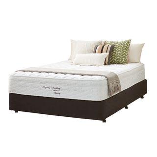 Bed - Dynasty Pillowtop Queen Ensemble