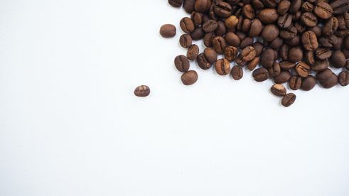 Coffee Beans 101: How to Choose The Best Coffee Beans