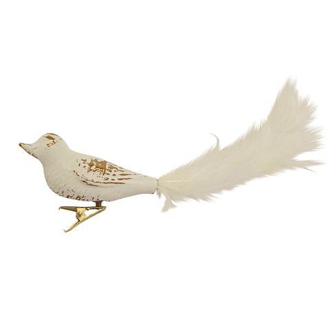 Feathered Bird White