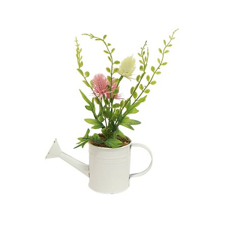 Mixed Potted Spring Flower Small