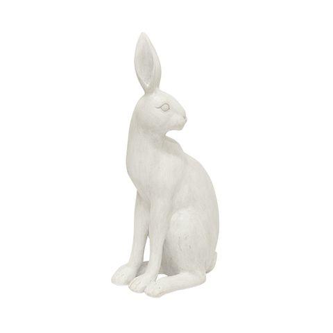 Harold the Hare Turning White