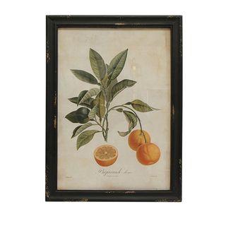 Botanical Orange Wall Art
