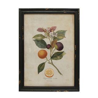 Botanical Lemon Wall Art