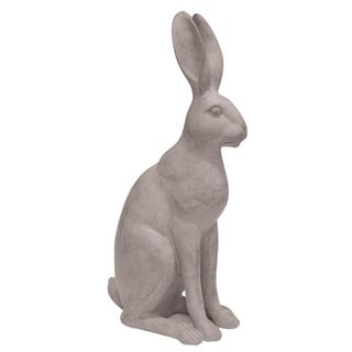 Harold the Hare Grey