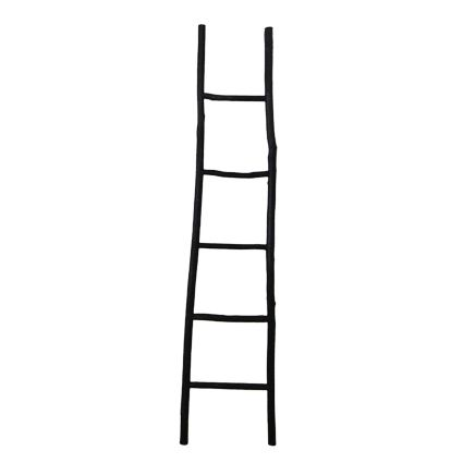 Black Decorative Ladder