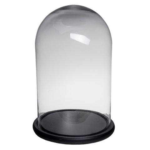 Tall Wide Dome Black Base