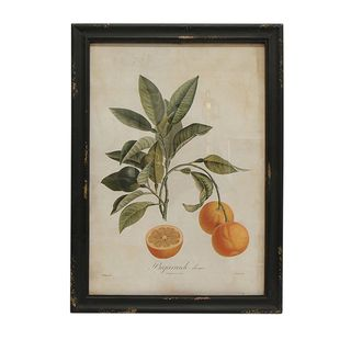 Botanical Orange Wall Art